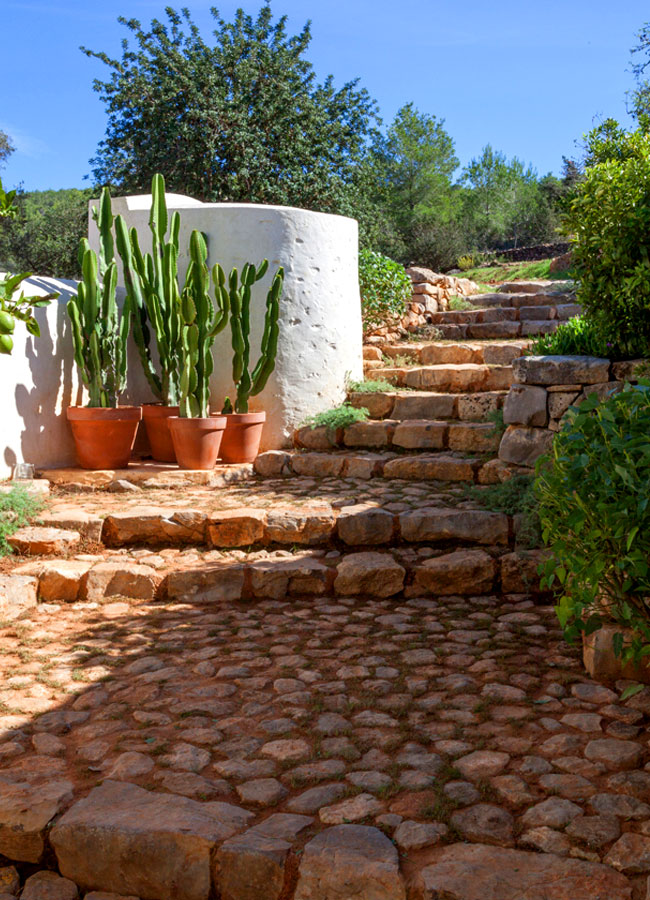 Ibiza_farm_17